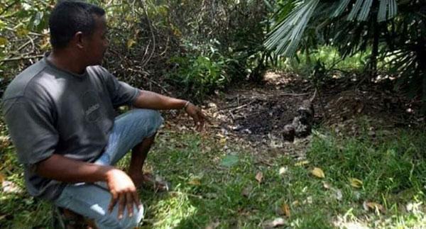 村民指着在油棕园里发现的女童尸体。