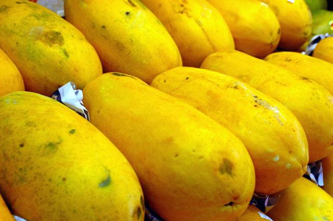 木瓜产量不仅受到气候影响,也因为虫害而导致歉收。(档案照)