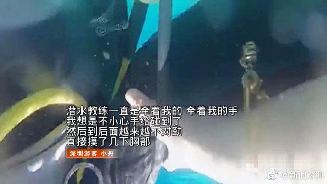 """(图取自微博""""新浪深圳"""")"""
