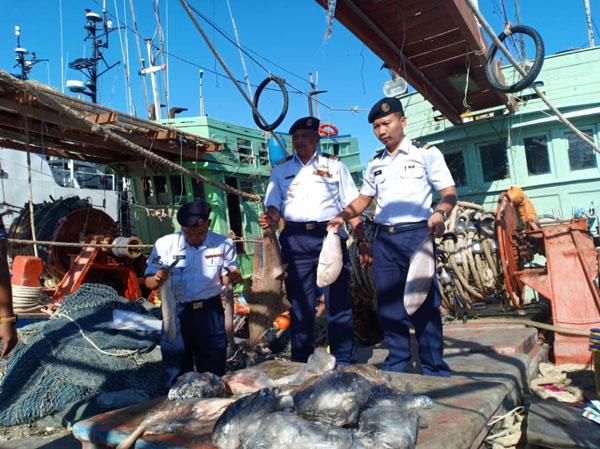 非法捕捞的渔获也一起被充公。
