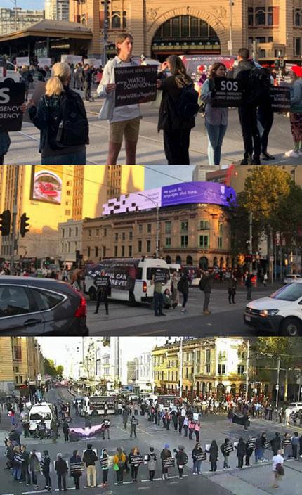 澳洲动物维权组织发起的一系列抗议素食主义活动,让整个墨尔本陷入了瘫痪。
