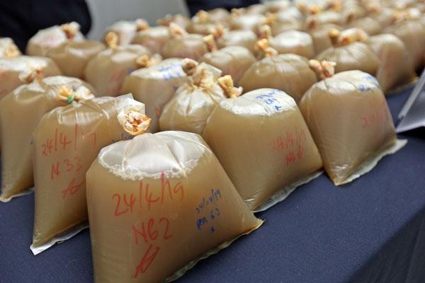 每一包葛冬叶水售价大约10令吉,嫌犯们一天内可净赚超过500令吉。