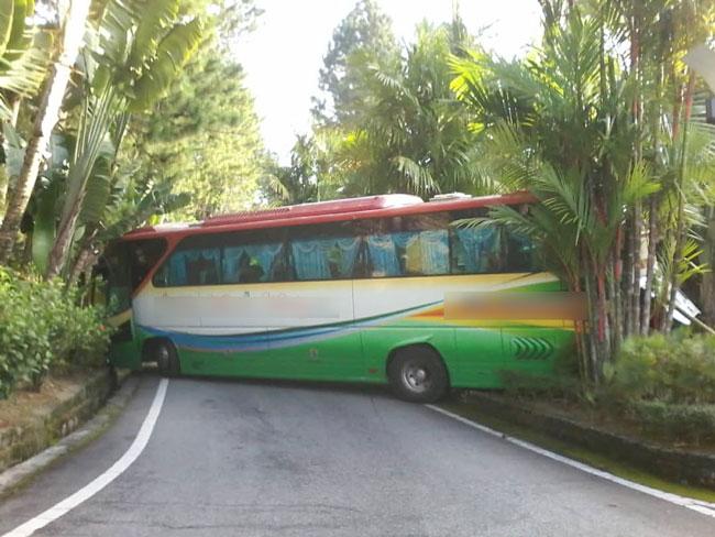 旅巴在转弯处上斜坡时突急速倒退,车尾撞上路墩,车头擦撞山坡!