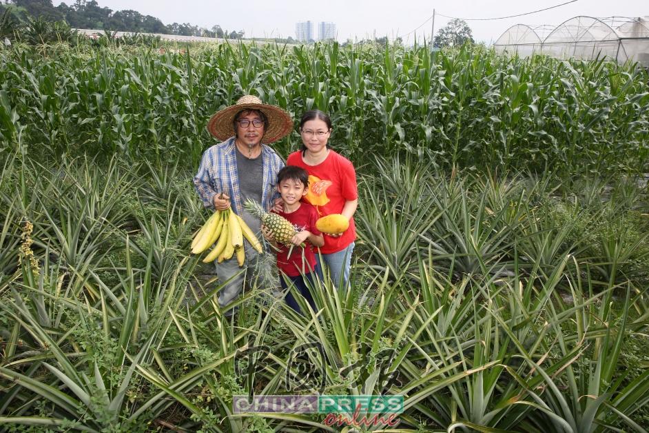 黄辉聪当初回归农田的决定,不但得到太太的支持,过程中也让儿子累积了4年多学习耕耘的小经验。
