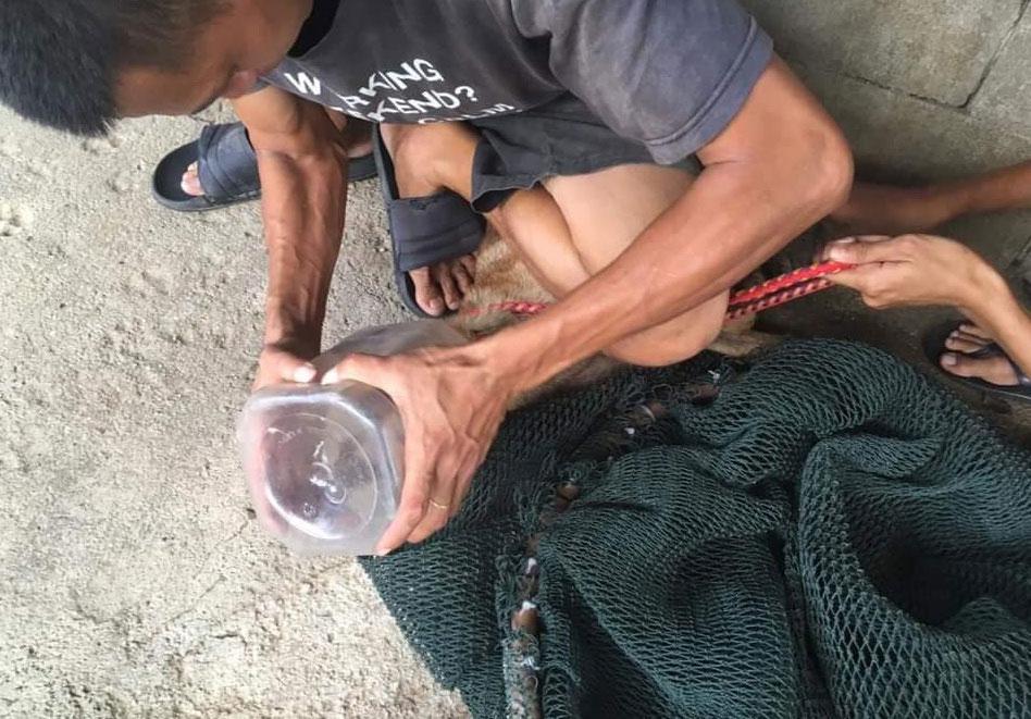 义工慢慢把塑料罐拉出。