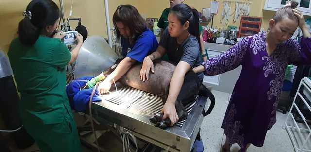 草粿送到医院急救。