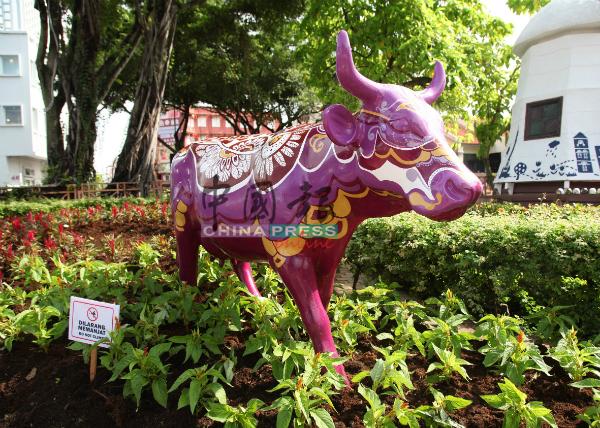 荷兰牛塑像将永久摆放在市遗区供游客与民众欣赏。