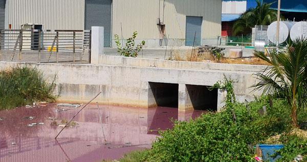 厂方擅自兴建的混凝土桥不符当局规格,会引起水流阻塞。