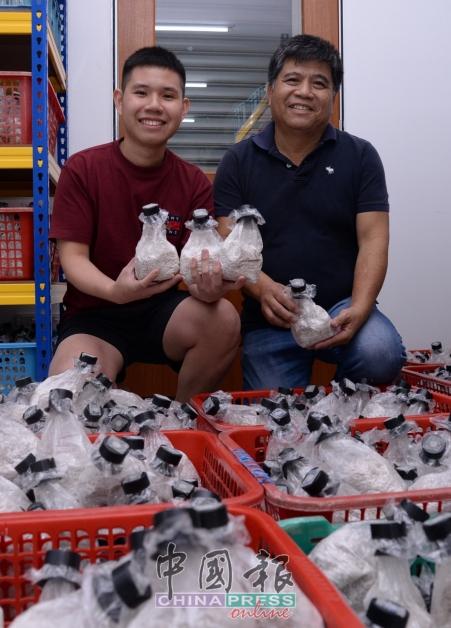 赖超强(右)的儿子赖振彦(左)到台湾进修农业科系后,回国帮助父亲扩展种菇事业,并负责食用菌菌种培育和出售。赖老师目前拥有十多种菇类的种源,犹如菇界的种子银行。