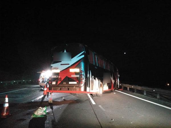 巴士肇祸后,从左边横越到右边车道,撞向分界堤后才告停下。