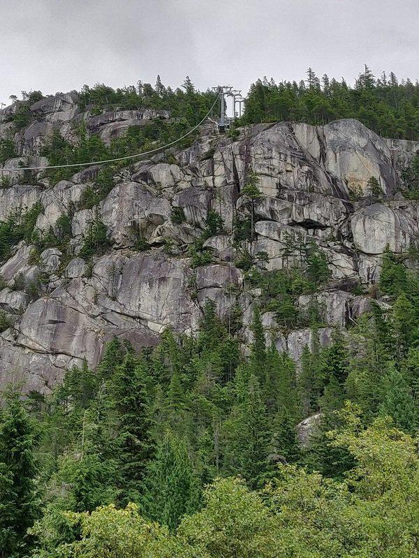 加拿大溫哥華的知名旅游景點「海天纜車」10日疑遭人惡意切斷纜繩,導致30個纜車廂全部墜地。