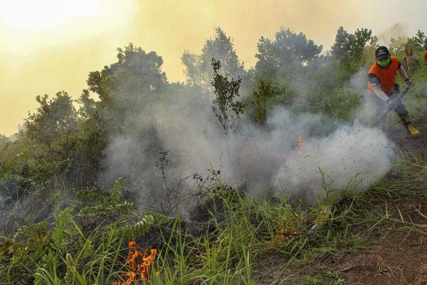 印尼政府这厢反驳该国是烟霾的祸害之首,更指责马来西亚境内的烟霾是源自砂拉越,另一厢却看见印尼消拯员试图在廖内省的金宝地区扑灭林火。(美联社)