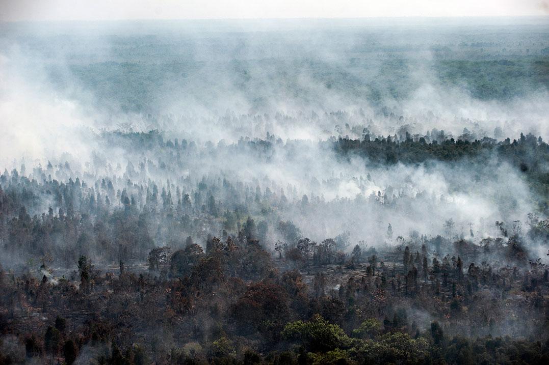 中加里曼丹省卡哈扬希列的林火仍未完全熄灭,不断有浓烟冒出。(美联社)
