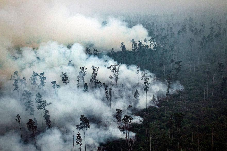 印尼中加里曼丹卡普阿斯县的森林,周六冒出滚滚浓烟。(欧新社)