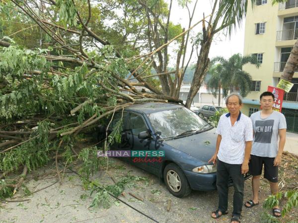 吴圳颢(右)的车遭倒下的树木压中,左为林亚弟。