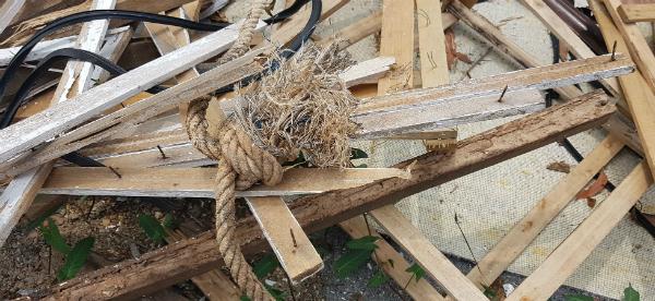被丢弃的木材有许多铁钉,非常危险。