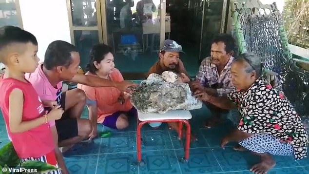 村民闻讯而来观赏龙涎香。