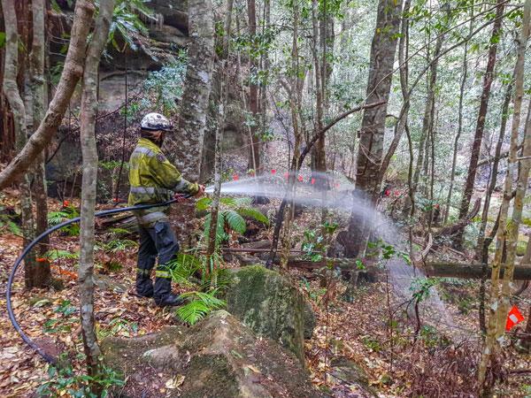 消防员于去年12月22日,向瓦勒迈松树洒水。(法新社)