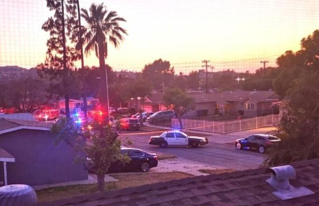 读者提供的26日晚上警车聚集在案发地点的照片。