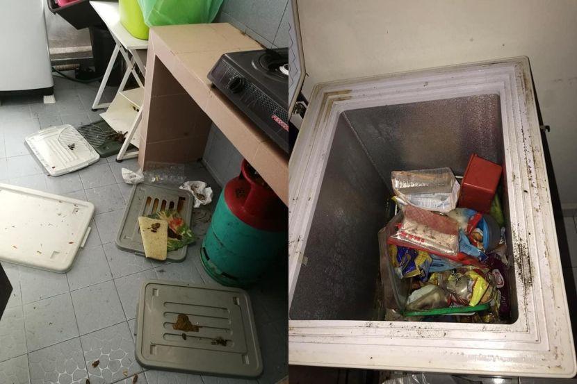 女教师的住家墙壁都是水迹和霉菌,家具也发泡发霉、两个冰箱发出恶臭。