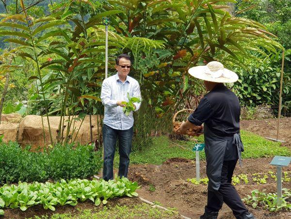"""谢富年将""""农场到餐桌""""的概念注入The Banjaran Hotsprings Retreat,带来别一番的有机饮食体验。"""