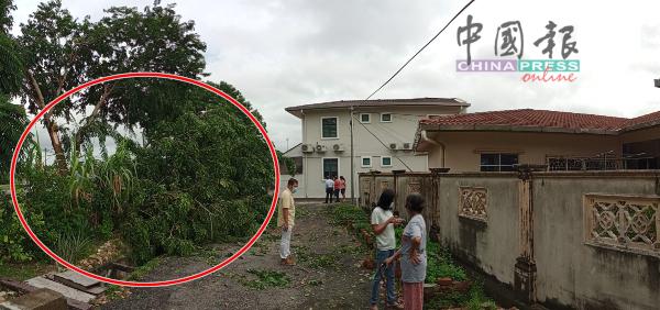 断裂掉下的树干尾端,与房屋距离距相隔一条小巷。