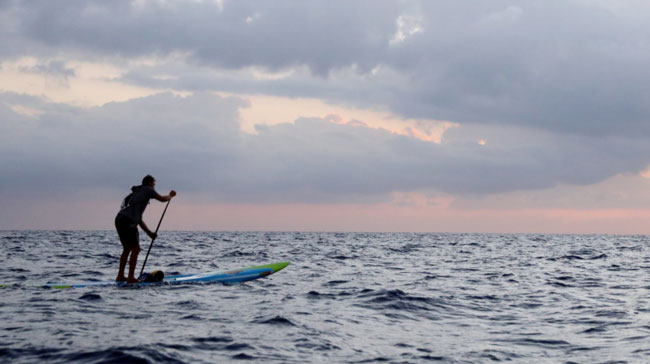 在立式桨板上划桨前进的米恰利迪斯。