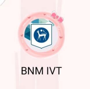 """类似""""BNM IVT""""手机应用程式诈骗手法,曾被警方揭发。"""