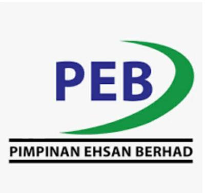 拟收购太阳能企业 PEB一开盘即涨停板