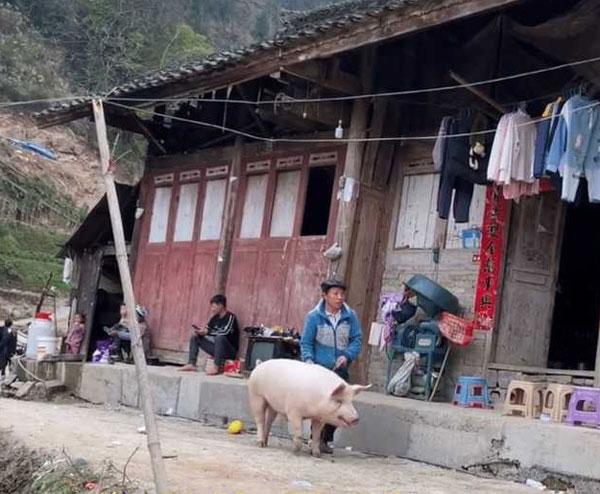 葬礼请全村吃饭14天 6天4头猪 丧家被吃垮
