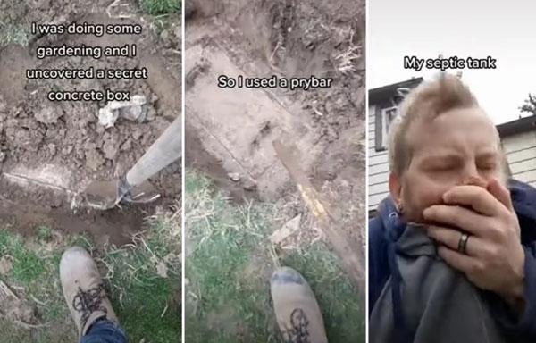 加拿大男子在家中后园除草时,意外发现地底有混拟土箱,一度以为寻得宝藏,不料一打开让他崩溃速逃。
