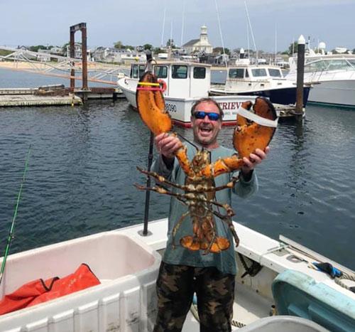 帕卡德是一名以捉龙虾为生的潜水员。