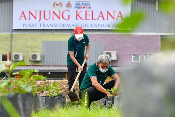 流浪汉转型中心的义工们帮忙检查该中心居民所栽种树苗。