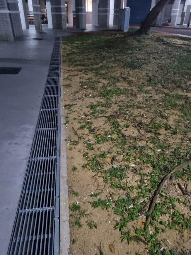 黄先生提供一张组屋底层草坪上满地烟蒂的照片,并称烟蒂都是楼下邻居陈先生所丢,以此证明对方烟瘾重,自己在楼上备受困扰。陈先生则否认有丢烟蒂的行为。(受访者提供)
